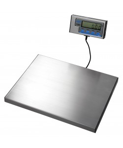 Bench Top Electronic Scales - 60 kg capacity - WS10B